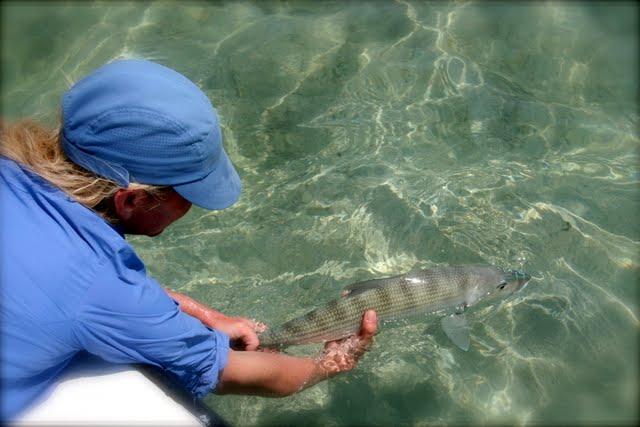 Bonefish Release